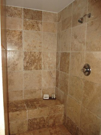 Renaissance St. Croix Carambola Beach Resort & Spa: Large shower