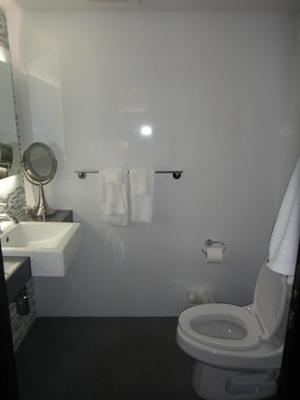 The Palms Hotel & Spa: One of 2 bathrooms: one with sink and toilet