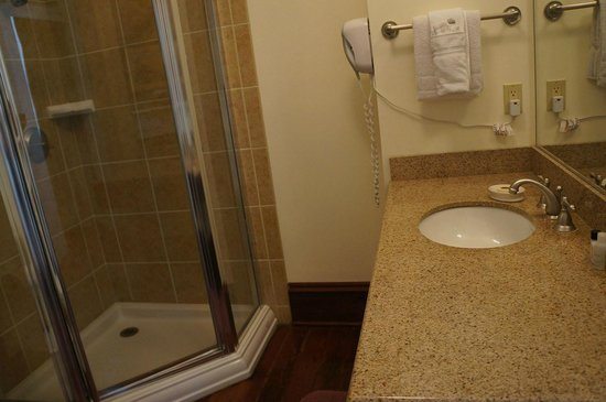 Prytania Oaks Hotel: SdB