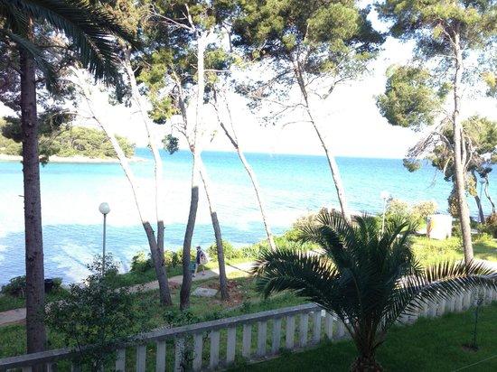 Villa Vela Luka at Velaris Resort : View from room