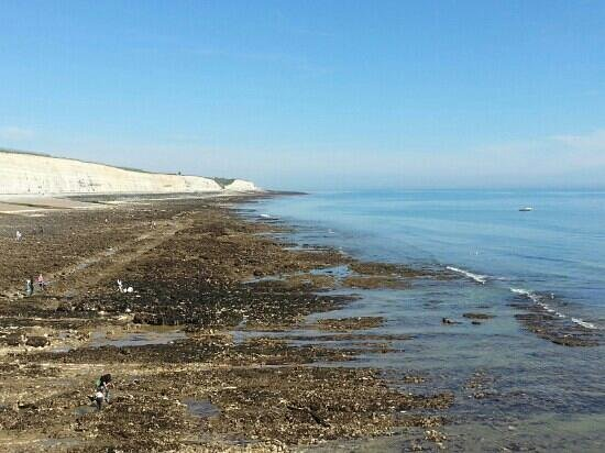 Undercliff Walk: View of beach and cliffs