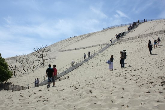 la dune du pyla picture of dune du pilat la teste de buch tripadvisor. Black Bedroom Furniture Sets. Home Design Ideas
