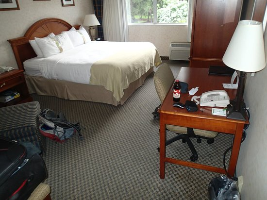 Holiday Inn Seattle - Issaquah: The room 200