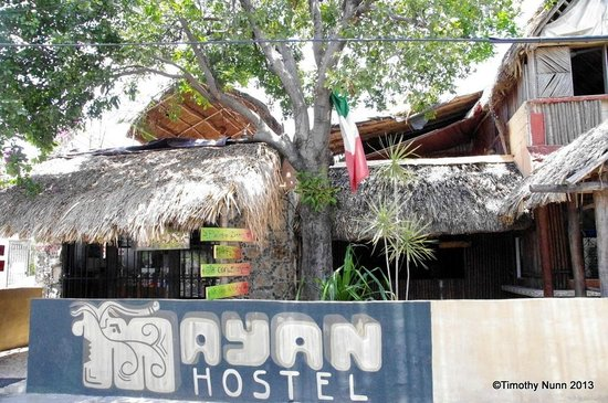 Mayan Hostel Cancun: The Mayan Hostel