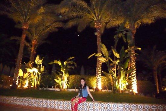 Baron Palms Resort Sharm El Sheikh: garden