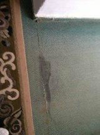 El Mouradi Beach: Carpets