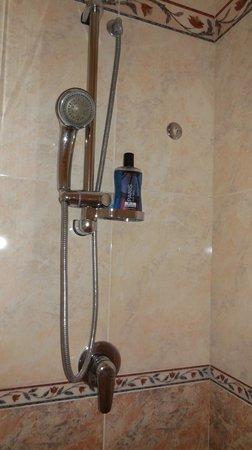 Hotel Artorius : shower