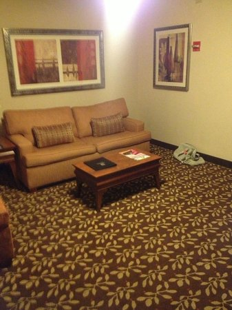 Embassy Suites by Hilton Orlando Airport: comfy sofa / bed