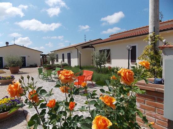 Terra Dei Santi Country House: vista piazzetta degli ulivi