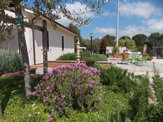 Terra Dei Santi Country House: aiuole fiorite