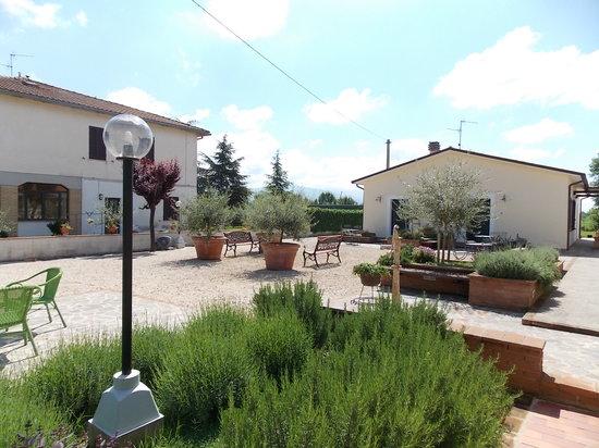 Terra Dei Santi Country House: aiuola rosmarino