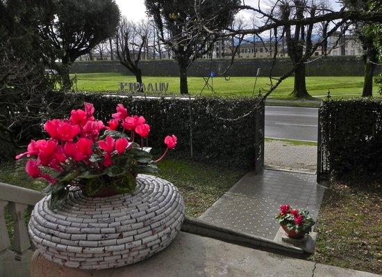 Villa Agnese B&B : esterni villa