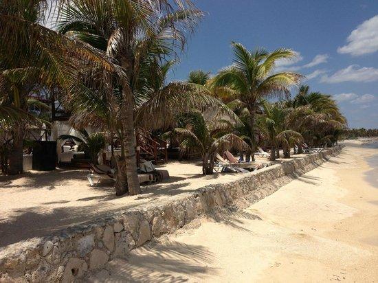 Hidden Beach Resort by Karisma: Beach view looking north
