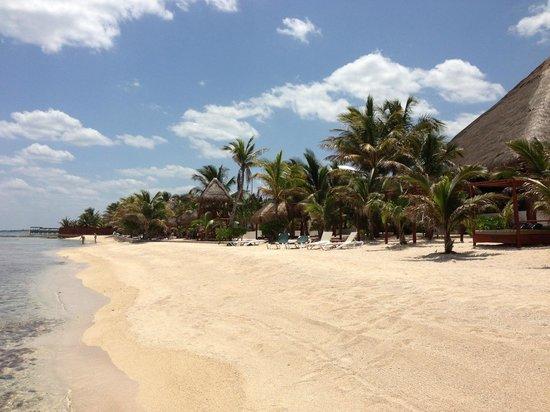 Hidden Beach Resort by Karisma: Beach view looking south