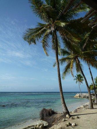 Hotel Le Diwali : Vue depuis la plage de l'hotel