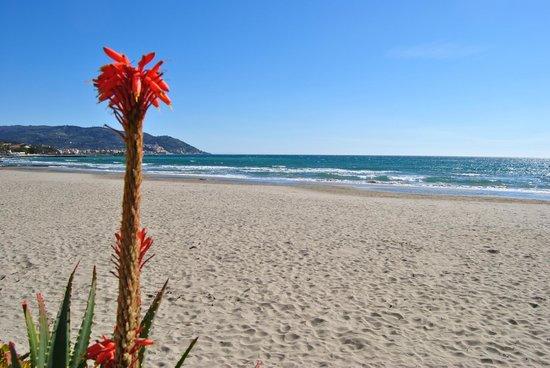 Hotel Tina: spiaggia sulla quale si affaccia il nostro albergo