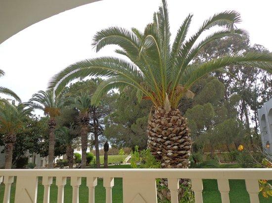 The Orangers Beach Resort & Bungalows: Room view