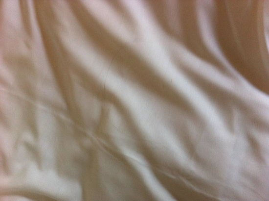 The Lombard Townhouse : Stained bed linen with hair on it