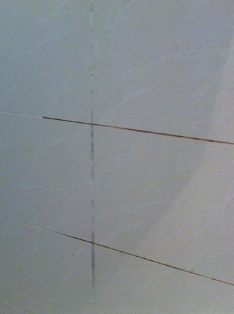 The Lombard Townhouse: Filthy grout on bathroom tiles