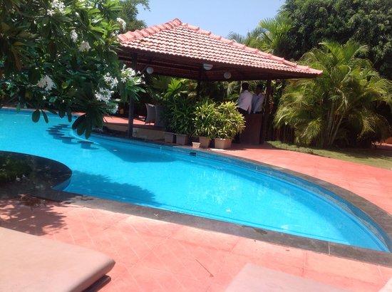 The Fern Gardenia Resort: empty pool empty bar!