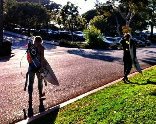 Dana Point, Καλιφόρνια: Surf with the Locals