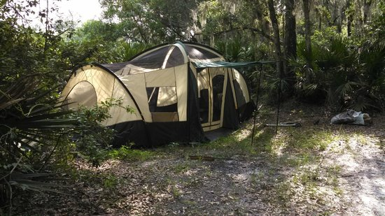 Wekiva Falls RV Resort primitive c& site with my tent & primitive camp site with my tent - Picture of Wekiva Falls RV ...