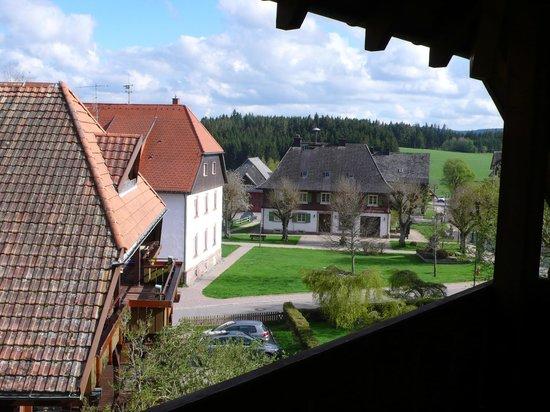 Hotel Hochfirst: Gartenblick