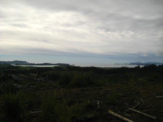 Horse Trek'n: Bay of Islands view