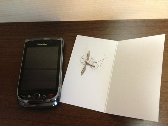 Holiday Inn Express Munich Airport: Large mosquito-like insect in room