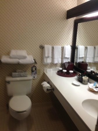 DoubleTree by Hilton Nashua: Bathroom
