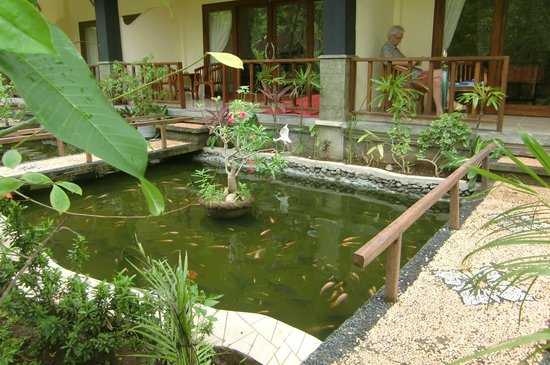 Bali Bhuana Beach Cottages: your own little fishpound