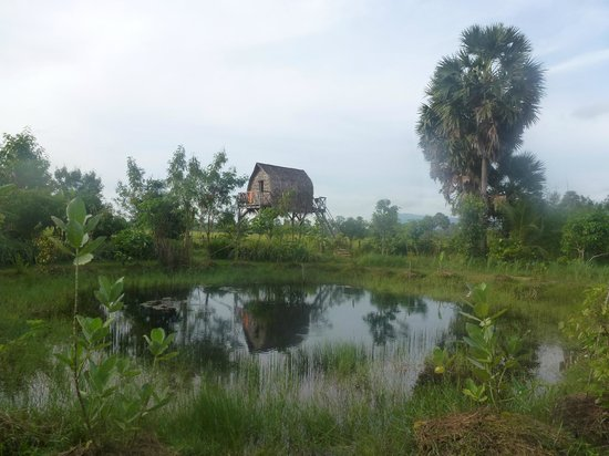 Ganesha Kampot Eco Guesthouse and More: View of tribal hut at end of pond
