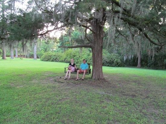 Cedar Grove Plantation : Add a caption