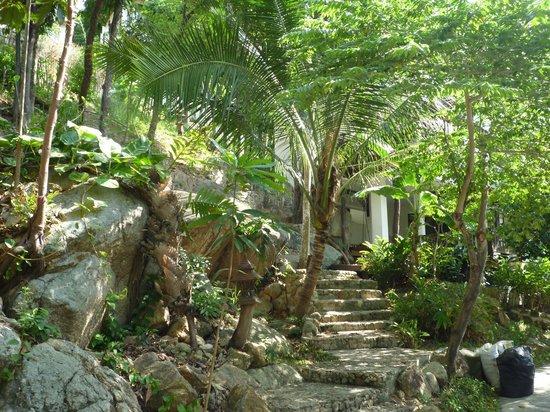 沙拉布里度假村照片