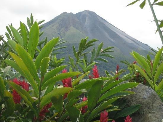 Hotel El Silencio del Campo : Arenal Volcano