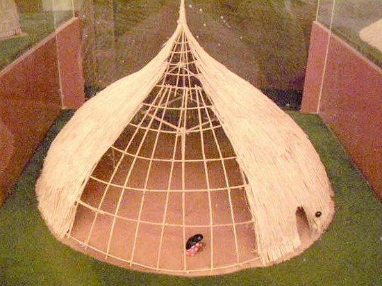 Sala de Exhibicion J.M. Cruxent: Choza amerindia