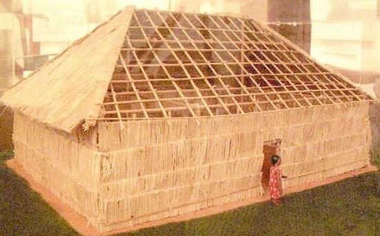 Sala de Exhibicion J.M. Cruxent: Vivienda amerindia