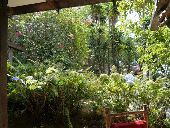 Hotel Bosque Las Nubes: Pleasant place to be