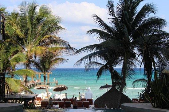 El Taj Oceanfront & Beachside Condos Hotel: VISTA DESDE EL JACUZZI DE LA PISCINA HACIA EL MAR