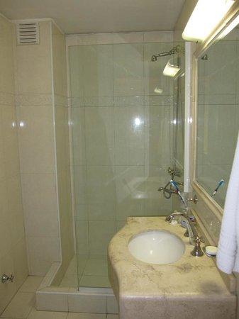 Condor Suites Apart Hotel: HAB