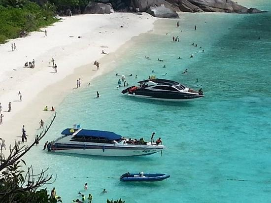Andaman Leisure Phuket Co., Ltd.: Similan - Tachai