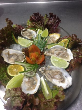 Z Gastro Bar: Fresh Oysters on the half shell