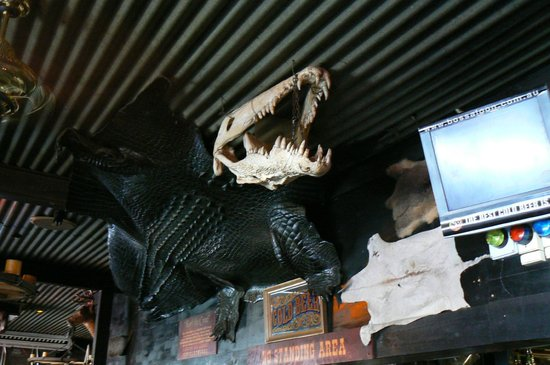 Bojangles Saloon & Restaurant: Mounted crocodile