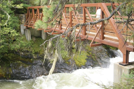 Icicle Gorge : The bridge at the low end of the trail...