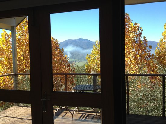 The Birches Luxury Spa Chalets: Look at the view & weather