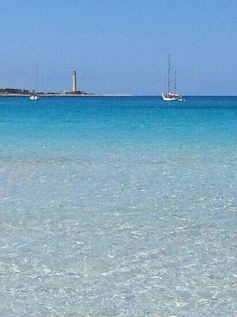Spiaggia di San Vito lo Capo : mare cristallino