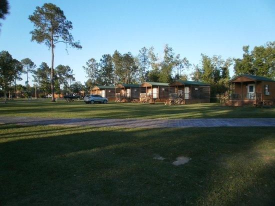 Lone Star Jellystone Park: Boo Boo Cabins