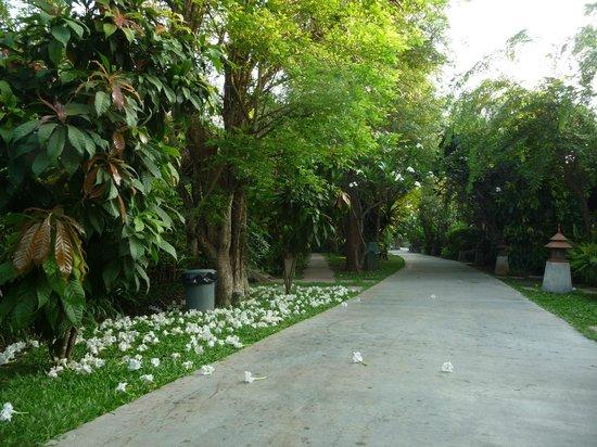 River Kwai Bridge Resort: Pathway through bungalows