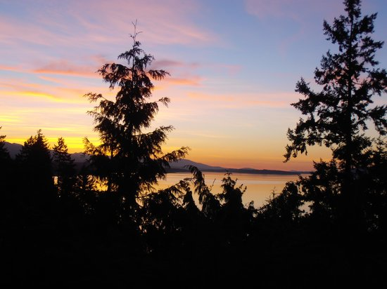 Eagle Landing Bed and Breakfast: zons ondergang in de tuin