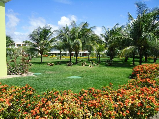 Iberostar Praia do Forte: Areas de relva